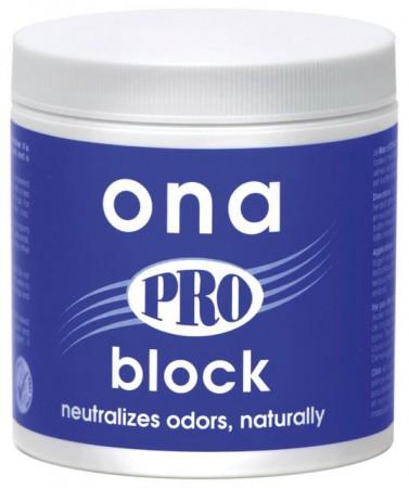 Geruchsbekämpfung Professionell mit ONA Block PRO